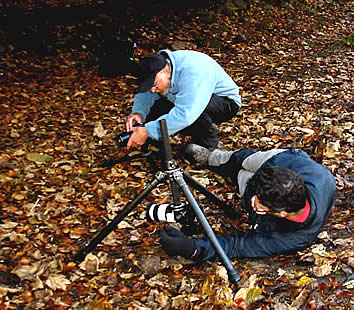 David Taylor sets up to photograph fungi